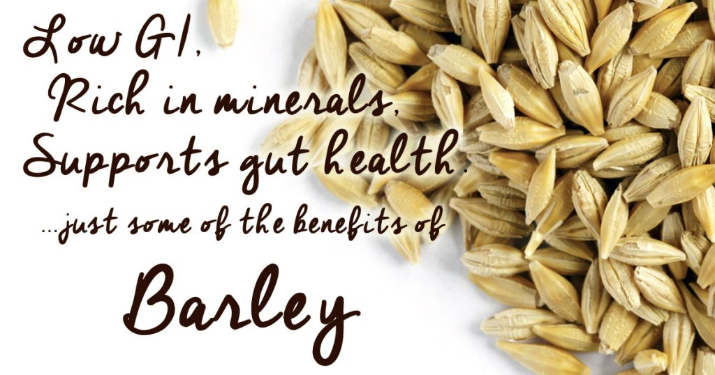 the benefits or eating barley