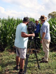 Gordo and Pete filming Steve coming out of the maize