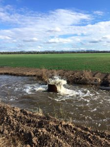 Water from the irrigation channel is a great help when there hasn't been enough rainfall.
