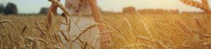 Kialla Pure Foods Home Discover