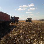 忙しい収穫日。作業を終えて帰宅する時間に。