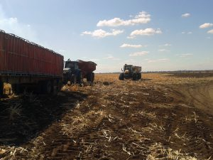 End of the harvest day. Time for everyone to go home.