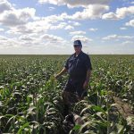 MIke inspects his sorghum crop