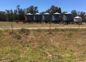 These silos are used to store the grain on the farm before transporting to Kialla