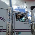 The trucker's friend