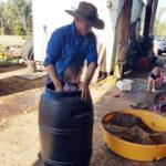 Ricky helps Matt prep the soil microbes