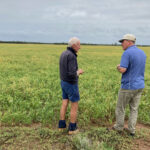 Eric and Kialla's manager Quentin inspect the millet